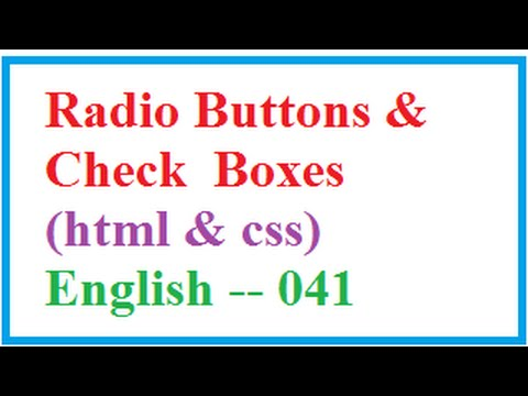 How to Put Radio Buttons and Check Boxes in HTML   --    English 041