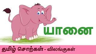 Elephant (யானை) - Animals (விலங்குகள்) - Learn Tamil Spelling (தமிழ் சொற்கள்) - Preschool For Kids