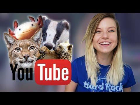 Wenn YouTuber TIERE Wären...