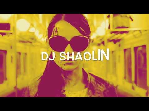 DJ SHAOLIN - THE JUNGLE
