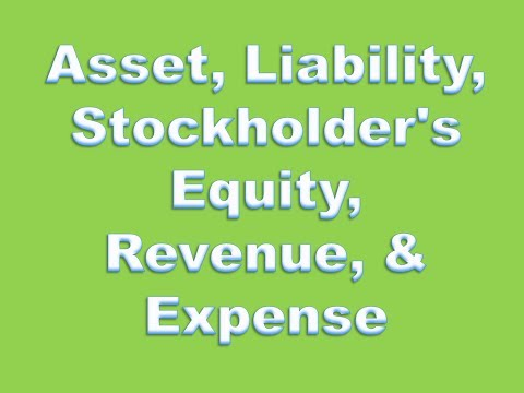 Financial Accounting Definitions: Asset, Liability, Stockholder's Equity, Revenue, & Expense