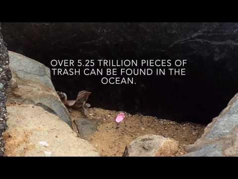 Water World: Ocean Pollution