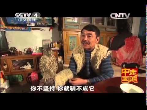 中國-走遍中國-20140414 為使藍天鷹常在