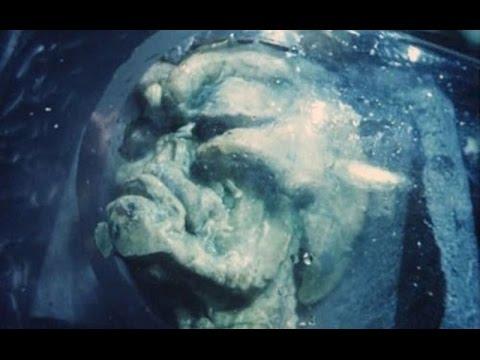 Невероятные открытия в подводной археологии. День космических историй