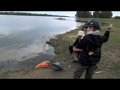 рыбалка в море на селедку