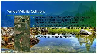 Effect of Wildlife Corridors Big Game animals Island Park,ID