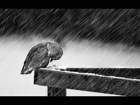 Beautiful Sad Piano and Violin - Cold by Jorge Méndez