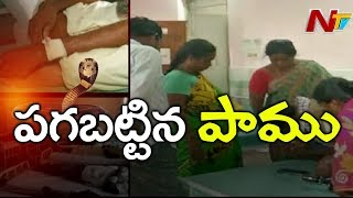 పాముకాట్ల కలకలం | 22 Farmers Bitten By Snakes In One Day Near Avanigadda | NTV