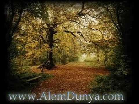 www.alemdunya.com Amatör müzik
