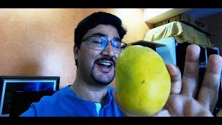 VLOG 31 | Sabse Mahnga Aam | Alphonso mango | Hapus Aam | Most Expensive Mango in India | Pune