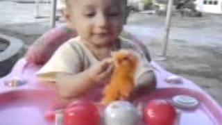 bayi makan ayam hidup