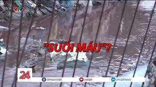 Kinh hoàng con suối đỏ ngầu như máu ở Đồng Nai - Tin Tức VTV24