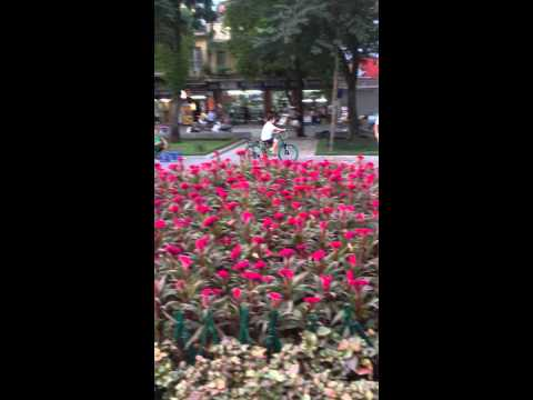 Quốc an tập xe đạp ở vườn hoa hàng đậu hà nội