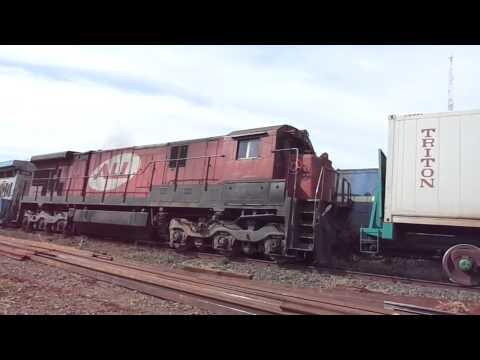 C 82 X N 62 video
