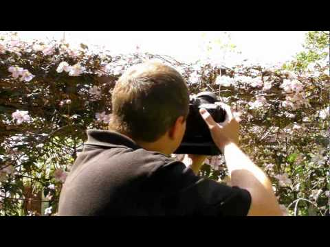 Exposure Compensation - Quick Shots 06