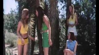 Trip With The Teacher (1975) - Teen Catfight