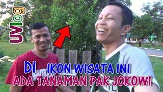 Siapa Sangka Di Ikon Wisata Ini Ada Tanaman Pak Presiden Jokowi