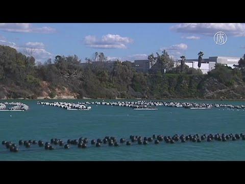 Завод по опреснению воды открылся в Калифорнии (новости)