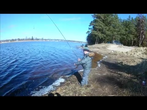 рыбалка в луде видео