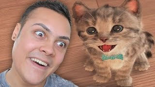 PLAYING KITTEN GAMES (WARNING SO CUTE !!! 🐱)
