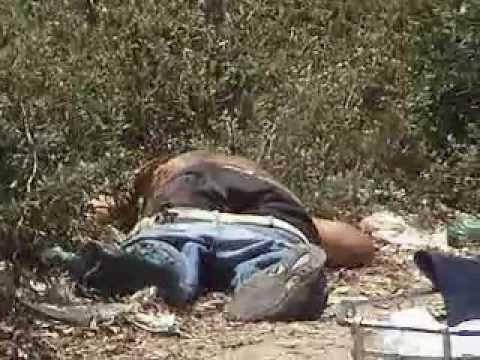 Videos En Narco Ejecuciones Fuertes