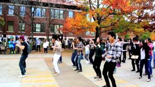 Purdue University Gangnam Style Flash Mob