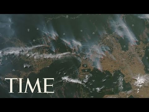 Download A Record Number Of Fires Are Currently Burning Across The Amazon Rainforest | TIME Mp4 baru