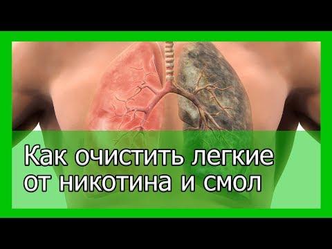 Лучший способ очистить легкие от никотина и смол