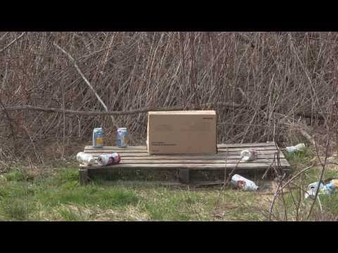Daisy Grizzly 840 BB Gun Review/Shooting Test