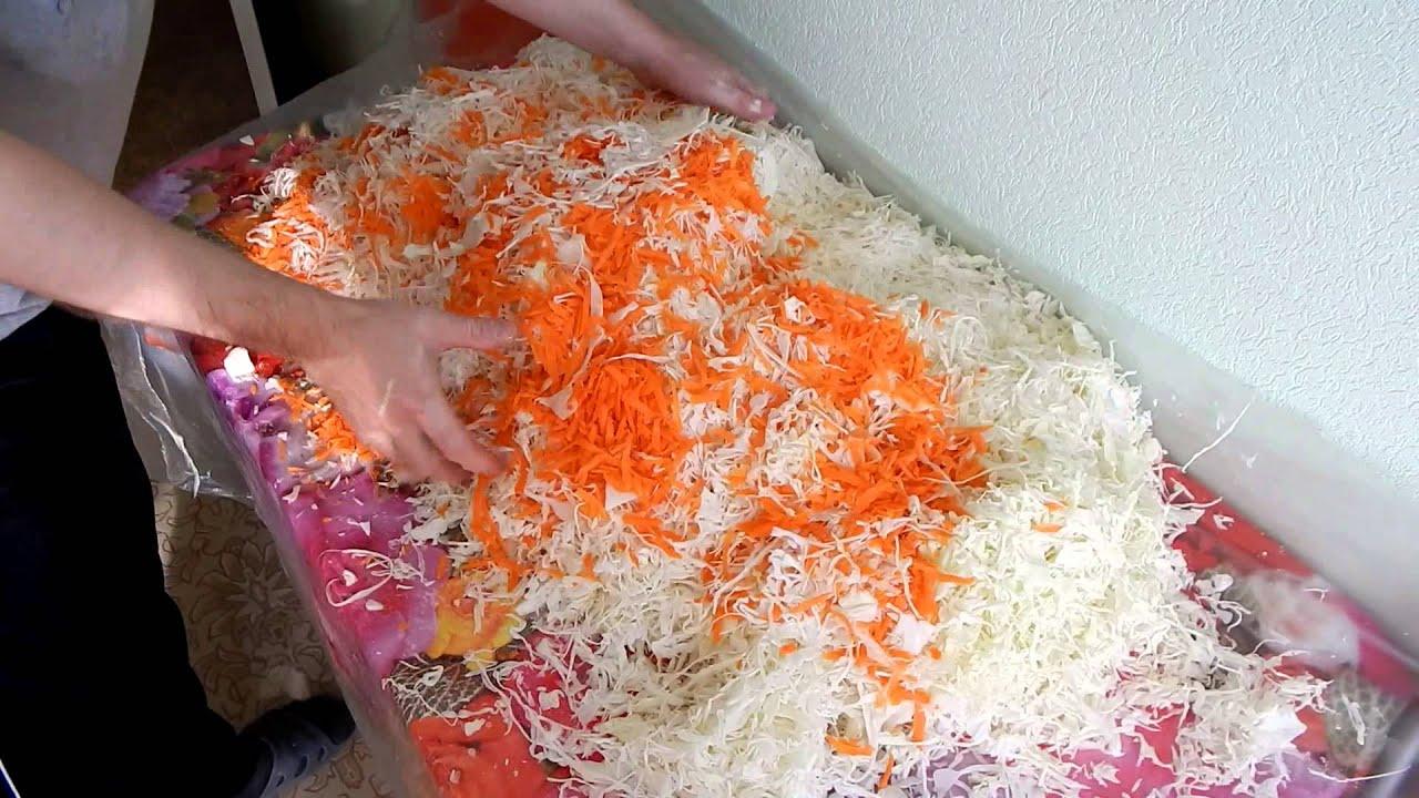 В чем солить капусту в домашних условиях рецепт 595
