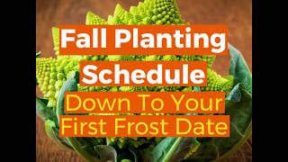 Fall Planting Schedule Down To Your First Frost Date