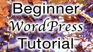 Beginner WordPress Tutorial (Free 90-Minute eCourse)