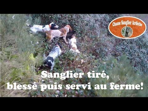 Chasse Du Sanglier En Ardèche 2014-2015-05-Sanglier Tiré, Blessé Puis Servi Au Ferme-10/01/2015
