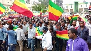Ethiopia Gondar People Protest Aug 31 2016