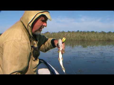 рыбалка на лимане в октябре