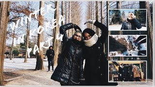 Korea Winter 2018 | Vlog part 4 #FabsXKorea (NAMI ISLAND,PETITE FRANCE, ETC)