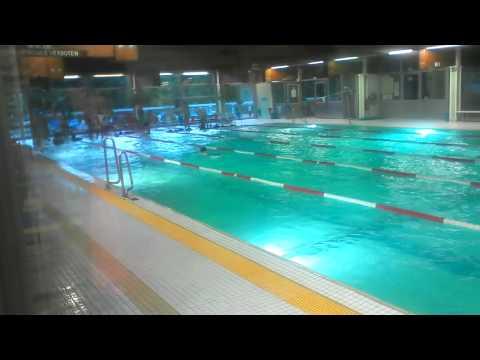 Schwimmtraining im Brigittenauer Bad