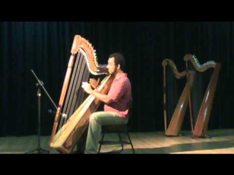 Orinoco Flow (Enya) / Vinicius Medrado - Harpa