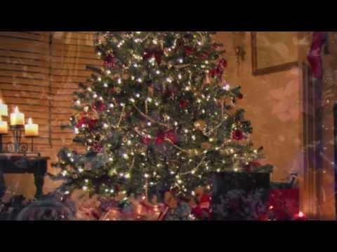 O Christmas Tree - Curtis Macdonald -New Age/Chill Music