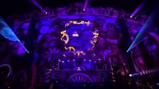 Tomorrowland 2014   Armin Van Buuren