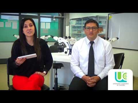 Competencias docentes para la formación de médicos