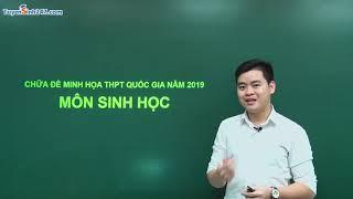 Phân tích và hướng dẫn giải đề thi minh hoạ THPT QG môn Sinh năm 2019 – Thầy Nguyễn Đức Hải