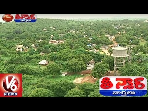 Nizamabad Akbar Nagar Village People Creates Forest | Teenmaar News | V6 News