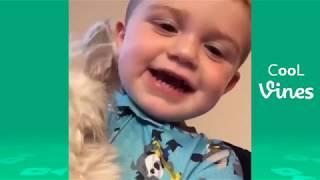 Funny Cat & Dog Vines compilation 2017 قطط مضحك