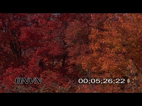Fall Colors Video Along Lake Superior North Shore Part 2