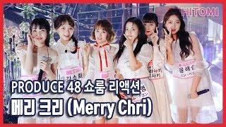 produce48 쇼룸 반응 - 메리 크리 (Merry Chri)