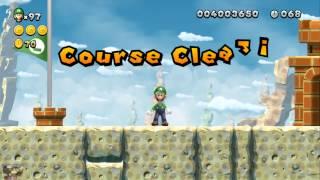 NSLU - Mario Block VS. Luigi Skills [9-6 Fire Bar Sprint]