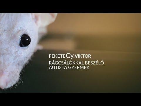 Rágcsálókkal beszélő autista gyermek // dal / 2014