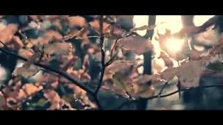 Watch Dreaded Downfall Seasons video