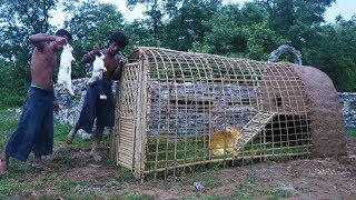 Build Rabbit House Using Bamboo & Mud